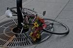 """Bike Garden"""