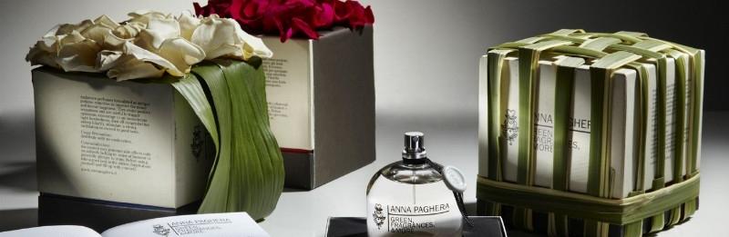 Fragrances - Fragrances